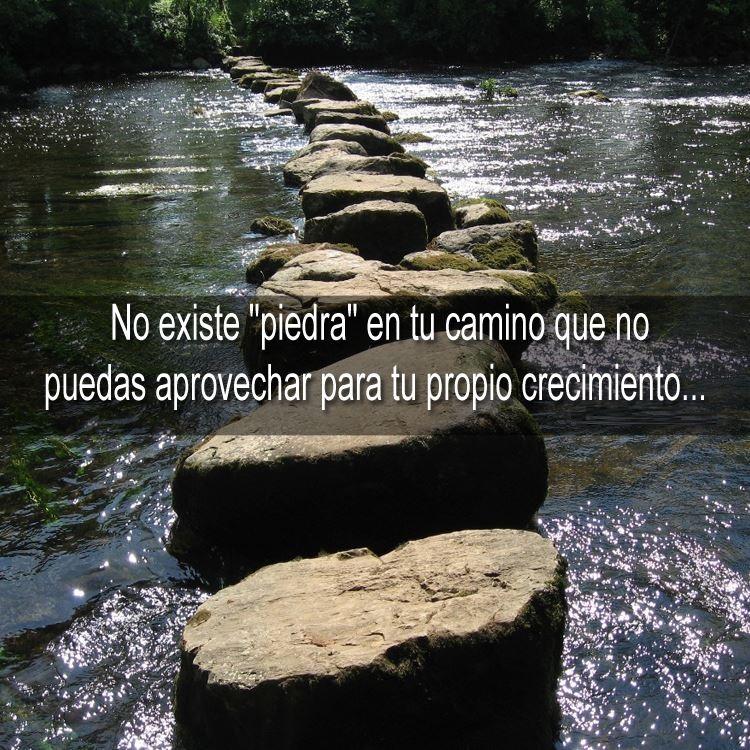 piedra-camino-frase-sevi
