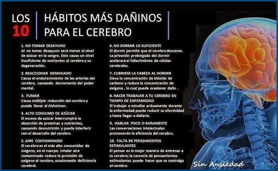 habitos-cerebro