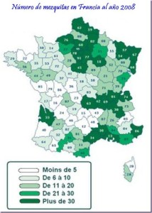 Aumento del nº de mezquitas en Francia hasta el 2008