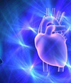 La Inteligencia Intuitiva del Corazón Humano explicado por la Ciencia
