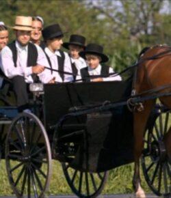 Los Amish: ¿Llegarán a dominar la Tierra?… (Sus códigos comunitarios son la clave de un crecimiento asombroso)